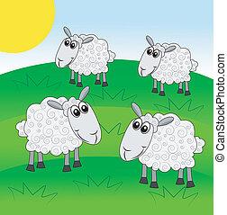 merry  sheep graze on a green lawn