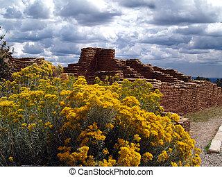 Mesa Verde  - Ruins in Mesa Verde National Park, Colorado.