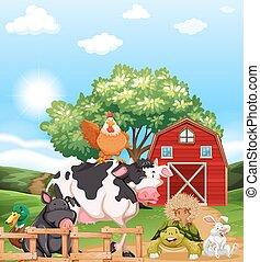 mescolato, animali fattoria