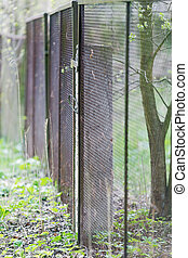 mesh fence and shoots of young plants in the spring