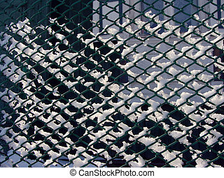 mesh fence winter