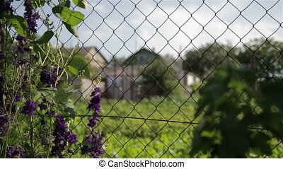 Mesh for fencing in the country