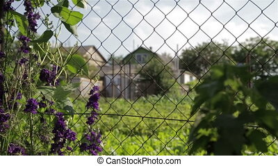 Mesh for fencing in the country in the area