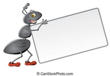message, depuis, fourmi