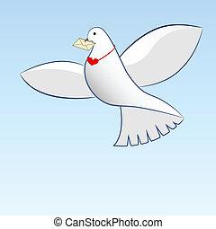 message., verdragend, liefde, tekening, duif
