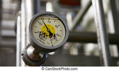 messgerät, zeigt, druck, in, rohrleitung, an, milch, pflanze