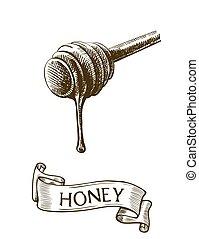 mestolo miele, bastone, sgocciolatura