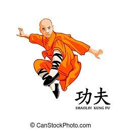 mestre, shaolin, kung-fu
