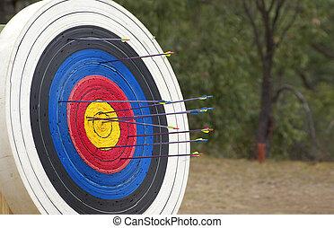 meta del tiro con arco