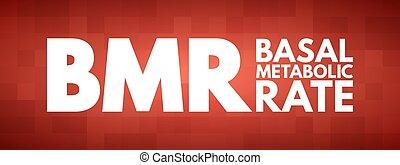 metabolic, bmr, siglas, tasa, -, basal