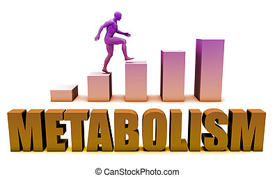 Metabolism 3D Concept  in Blue with Bar Chart Graph