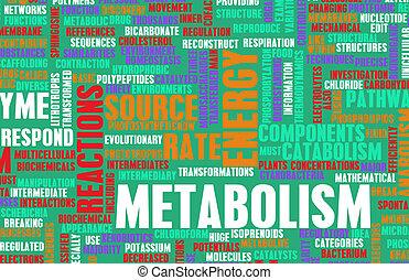 Metabolism as a Health Concept