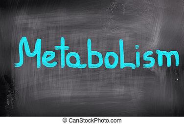 Metabolism Concept
