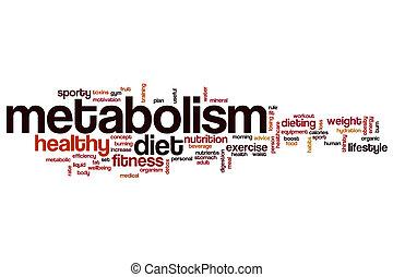 Metabolism word cloud concept