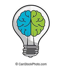 metade, cérebro, bulbo, luz