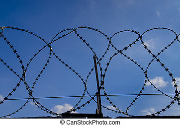 Metal barbed wire on a blue sky with white clouds