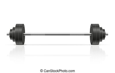 metal barbell for muscle building in gym vector illustration