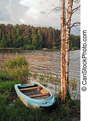 Metal boat near birches