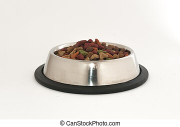 Metal cat bowl full of food