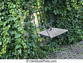 Metal chair in the park