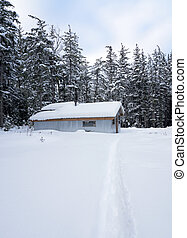 Metal garage with path through the snow