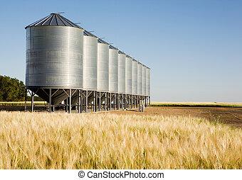 Metal Grain Bin - Grain bins in the distance with a wheat...