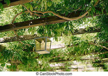 Metal hanging lantern on wooden beams of an arch in green wisteria leaves.