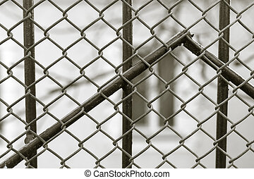 metal mesh fence as a backdrop