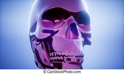 metall skull rotate on colored background