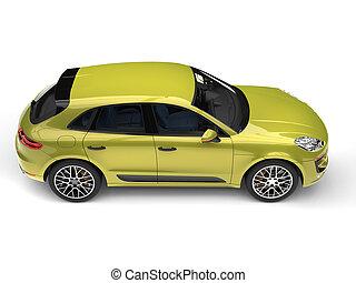 Metallic jungle green modern SUV - top down side view