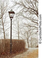 metallo, lampione, in, nebbioso, città, parco