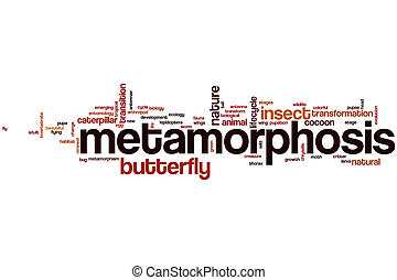 Metamorphosis word cloud concept