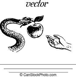 Metaphor from the book The Bible, Snake is holding an apple, silhouette on a white background,