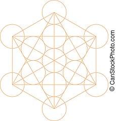 Metatron's Cube - La fleur de la vie. Vector Illustration.