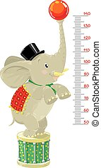 Meter wall or height chart with Funny elephant - Meter wall...