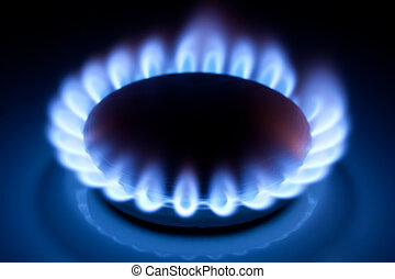 Methane flames at kitchen cooker - Methane blue flames at...