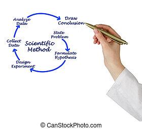methode, wetenschappelijk