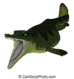 Metriorhynchus Reptile Open Mouth