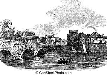 metszés, bridzs, limerick, thomond, király, szüret, írország...