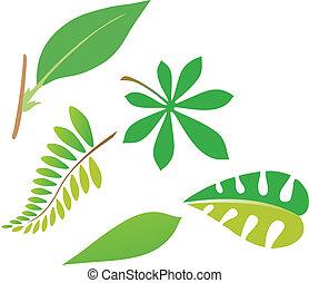 mette foglie