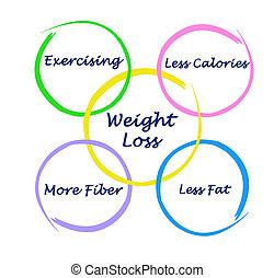 mettere dieta