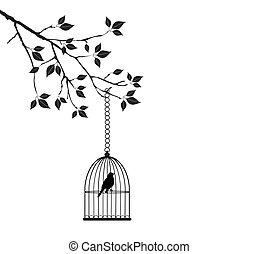 mettez cage oiseau