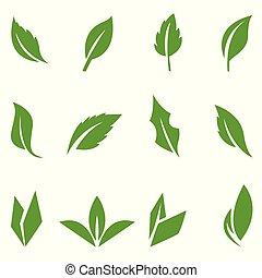 mettez stylique, feuilles vertes, elements.