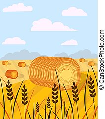 meules foin, fields., rural, bales., campagne, secteur, paysage., foin, paysage