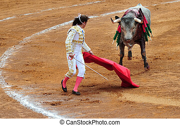 Mexican Bull-fight - A Mexican woman Matador and a bull are...