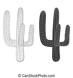 Mexican cactus, desert plant. vector