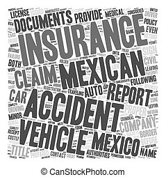 Mexican Car Insurance What To Do If You Get Into An Accident text background wordcloud concept