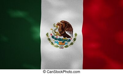 Mexican dense flag fabric wavers, background loop - Mexico ...
