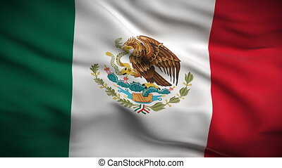 HD 1080. Highly detailed Mexican flag ripples in the wind. Extreme detail includes fabric texture. Animation is looped for continuous playback.