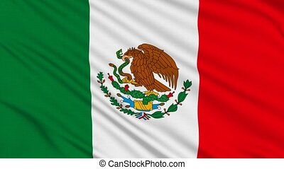 Mexican flag, with real structure of a fabric